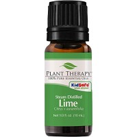 Plant Therapy Lime Steam Distilled Essential Oil 10 mL (1/3 oz) 100% P