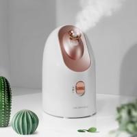 Dahlia COCOBEAUTY Nanometer Cold & Hot Double Mist Sprayer Facial Stea