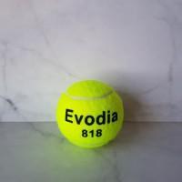 BOLA TENIS LAPANGAN EVODIA / TENNIS BALL / 1 SET ISI 3/ TABUNG