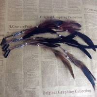 Bohemian Women Girls Fashion Feather Clips in on Hair Extensions