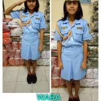 Baju/kostum/stelan profesi TNI WARA anak size 1-4 (tk)