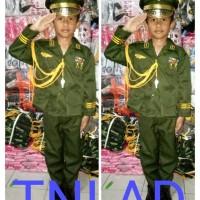 Baju/kostum/stelan profesi TNI AD anak size 1-4 (tk )