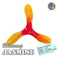Bumerang Boomerang JASMINE Mainan Anak Edukatif Tradisional Sport Fun