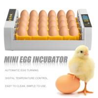 Inkubator 24 Telur untuk Ayam / Kalkun / Telur Otomatis