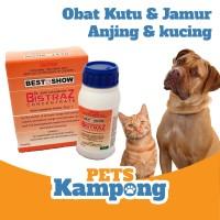 Obat kutu jamur untuk Hewan anjing kucing