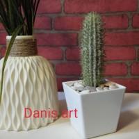 Kaktus palsu/ kaktus plastik / kaktus coboy