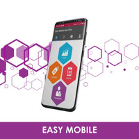 Easy Accounting System - Easy Mobile Pro Edition EASY6