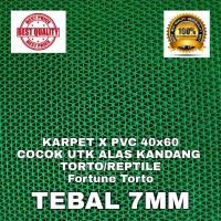 KARPET X PVC 40x60 HIJAU TORTO REPTIL ALAS KANDANG SULCATA BEARDED