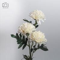 Bunga Carnation / Bunga Anyelir Palsu / Properti Foto