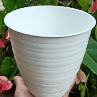 Pot bunga tawon putih 241 tinggi / pirus / pot plastik
