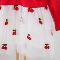 Dress Princess Anak Perempuan Lengan Panjang Bahan Mesh Bordir Bunga