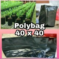 POLYBAG 40x40 1 Kilogram