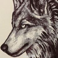 Stiker Tato Temporer Pola Serigala Mudah Diaplikasikan Dan Dilepas