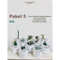 Paket 10pcs Sukulen Kaktus Mini Pot Putih 90000