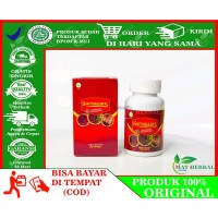 Walatra Sarang Semut Asli Original With Nano Technology 100 Kapsul