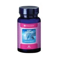 WELLNESS Wellness Joint Formula Suplemen Makanan isi 30 Kapsul