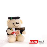 Boneka Wisuda Bear Duduk Imut 22 cm - Putih - Putih, Tanpa Bungkus