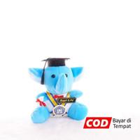 Boneka Wisuda Gajah Mini