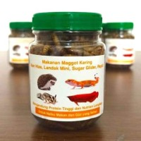Makanan Magot Kering untuk Ikan Hias, Landak Mini, Sugar Glider,Reptil