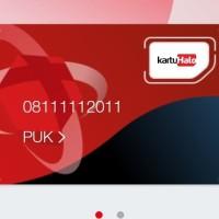 Nomor Cantik Pascabayar / Kartu Halo / 0811111