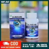 Ekstrak Ikan Gabus - Albucare Asli Original - Albumin Kapsul