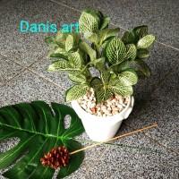 Daun katuk palsu/ daun hias/ tanaman plastik/ tanaman palsu