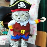 Baju Anjing/Kucing Motif Bajak Laut