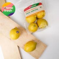 Lemon Impor Australia 1kg   Homefresh