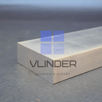 Plat Aluminium Strip 50 mm x 19 mm