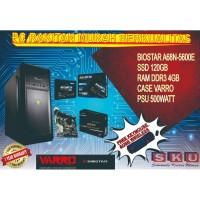 BIOSTAR A68N-5600E / 4GB D3/ SSD 120GB / FREE USB WIRELESS + KEY/MOUSE