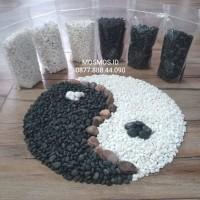 Batu Hias Putih Italy IMPORT - Size Mini - Untuk Pot, Taman & Aquarium