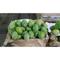 Buah Mangga Indramayu [PREMUIM] 1 kg