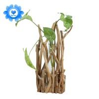 ⭐1 Set Glass Vase Tube Shape Clear Flower Bottle With Wooden Shelf
