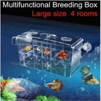 Akuarium Benih Breeding Pemijahan Internal Mini Unik Ikan Udang Hias