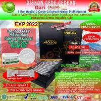 Obat Herbal Multi Khasiat APOLLO-12 Cordy-G Herbal Ampuh