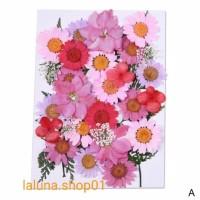 Natural Dried Flower Art Flower - A