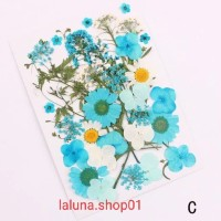 Natural Dried Flower DIY Art Flower - C