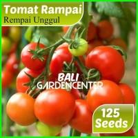 Benih Biji Bibit Tomat Rampai Rempai Unggul