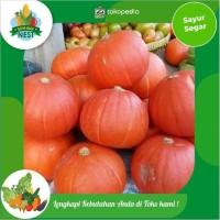 Labu Kabocha / 500 gram - sayur dan buah fresh