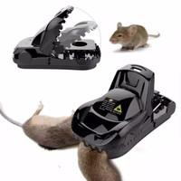 perangkap tikus double spring
