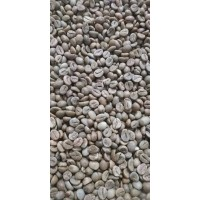 Kopi Robusta Kerinci - Green Bean