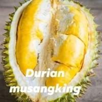 1paket bibit durian montong musangking bawor