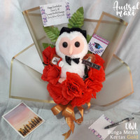 Buket bunga boneka wisuda / buket palsu - Merah, OWL