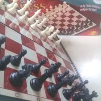 Catur Magnet 32cmx32cm Magnetic Brains Chess - Brains 8808
