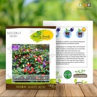 BENIH/BIBIT CABE PELANGI BOLIVIAN RAINBOW (haira seed)