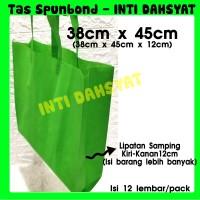 Tas Spunbond Non Wooven Goodie Bag Handle 38x45+12 (isi 12lembar) HLS