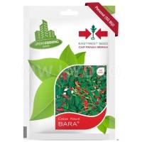 Benih Cabai Rawit BARA - Panah Merah / East West Seed