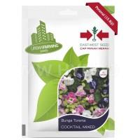 Benih Bunga Torenia COCKTAIL MIX - Panah Merah / East West Seed