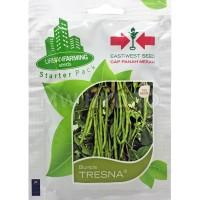 Benih Buncis TRESNA - Panah Merah / East West Seed
