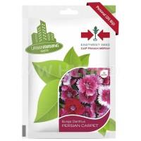 Benih Bunga Dianthus PERSIAN CARPET - Panah Merah / East West Seed